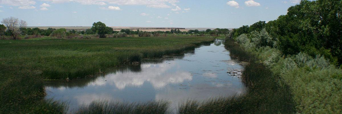 Rio_Grande_River_marshes