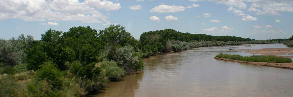 Rio_Grande_River_near_Albuquerque